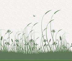 logo et illustration nature