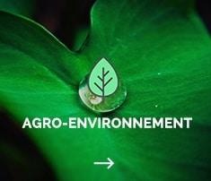 conseil en communication, eco design, site web, environnement, agriculture, nature, développement durable