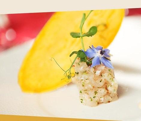 Design & intégration du site du restaurant Le Micocoulier