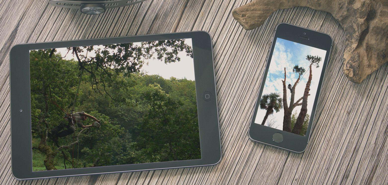 Marketing & Communication digitale Arboreal, préservation des espaces naturels et protection des arbres