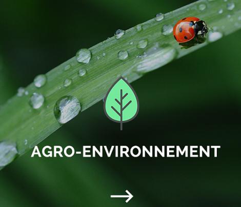 Création site Eaucea / Environnement