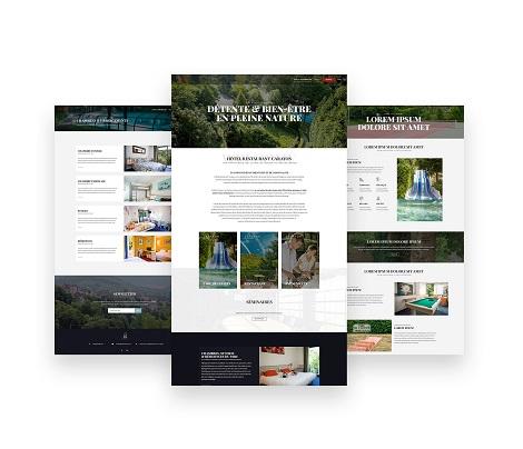 Design & conception du site de l'hôtel Carayon