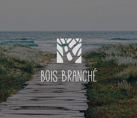 Identité graphique & logo Bois Branché, objets en bois flotté