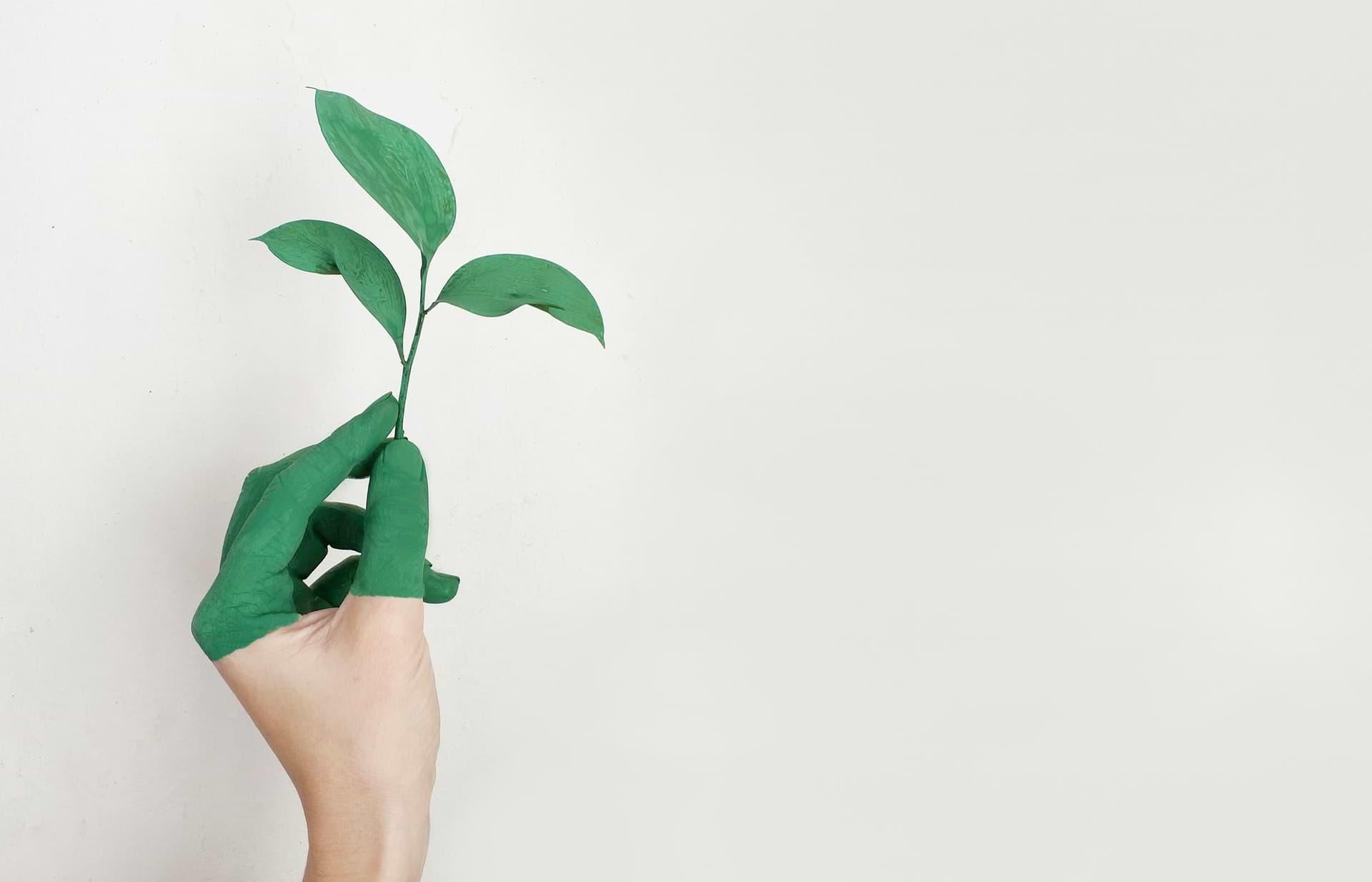 Conseil en communication environnementale et communication d'entreprise à Toulouse